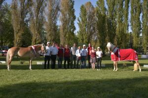 Nejlepší starší klisny s majiteli a komisí